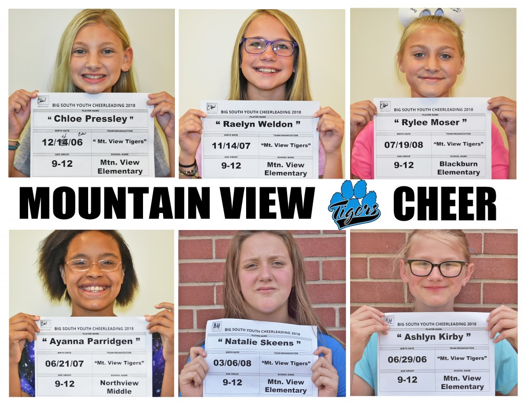 Mountain View Tigers Cheer 9-12 Roster page 2