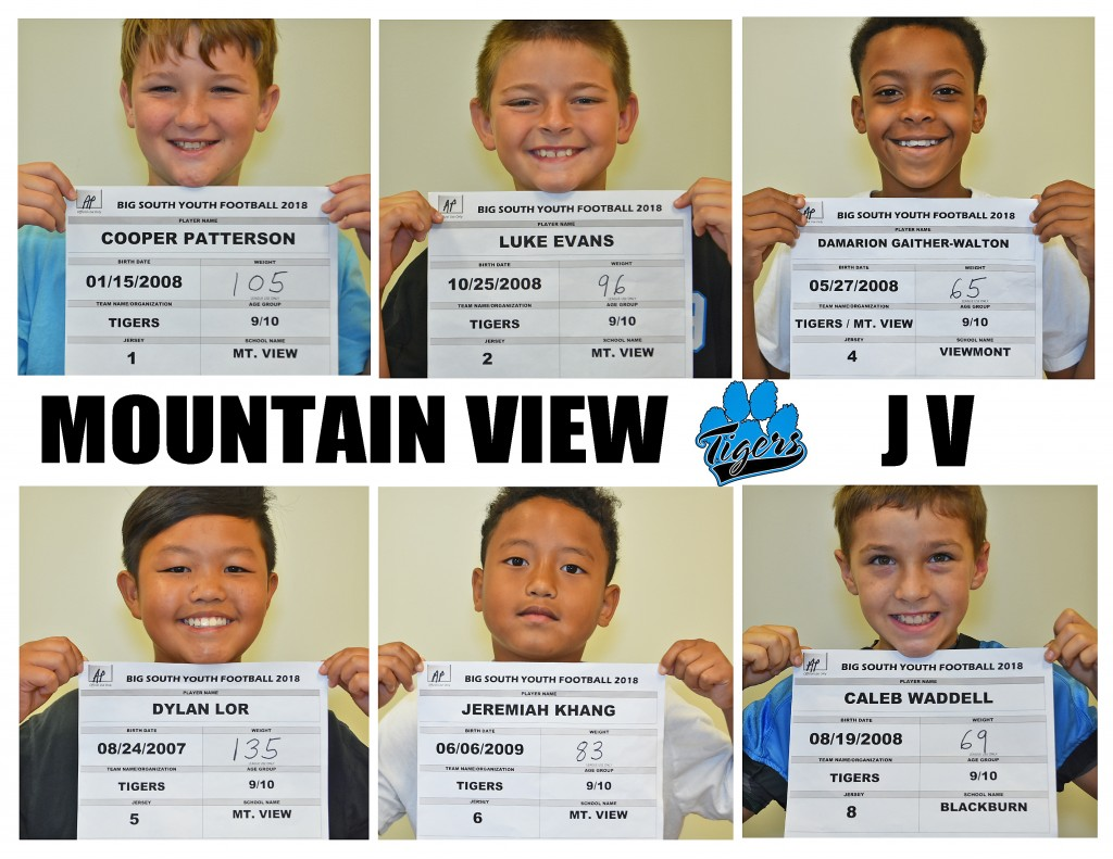 Mountain View Tigers JV Roster page 1