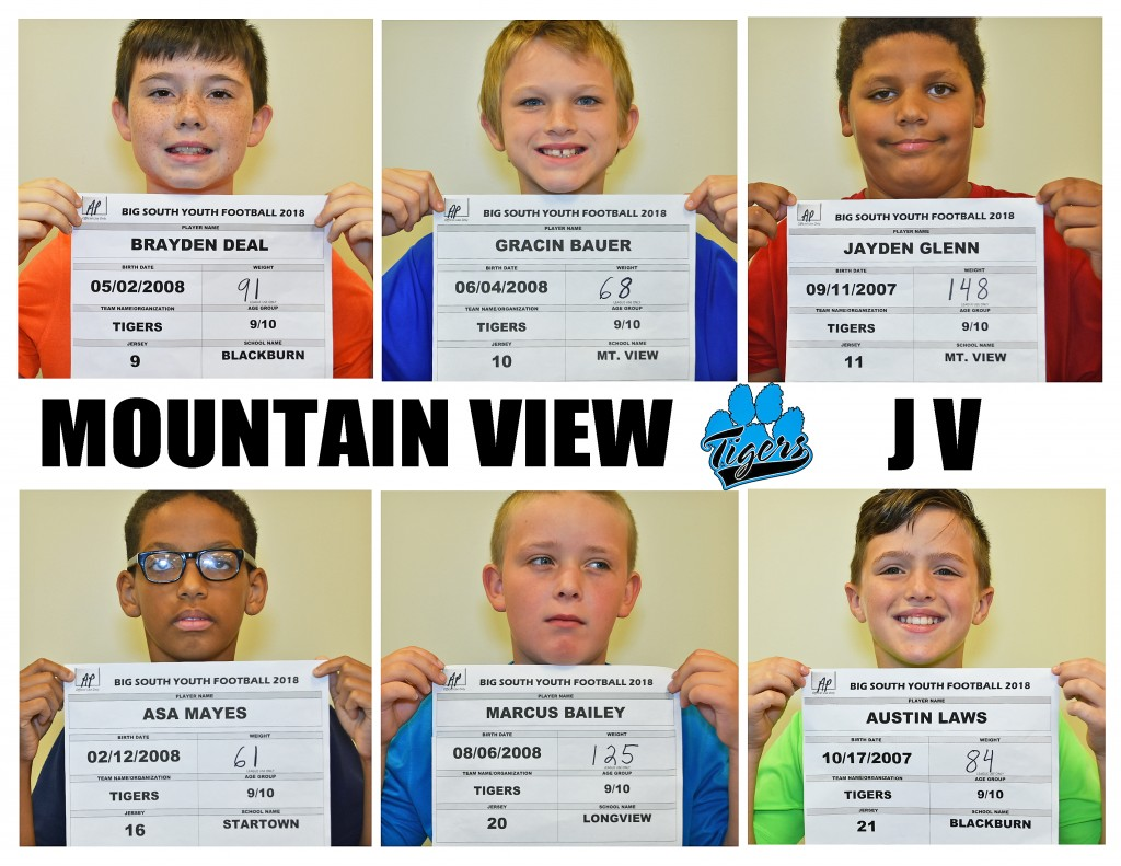 Mountain View Tigers JV Roster page 2