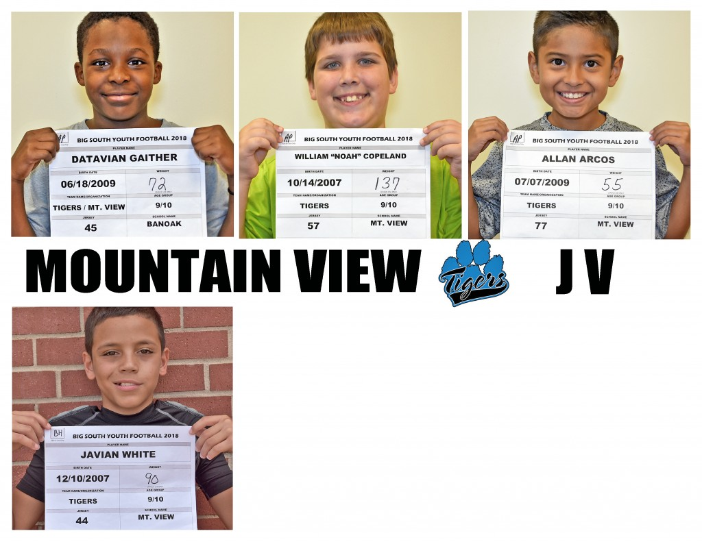 Mountain View Tigers JV Roster page 4