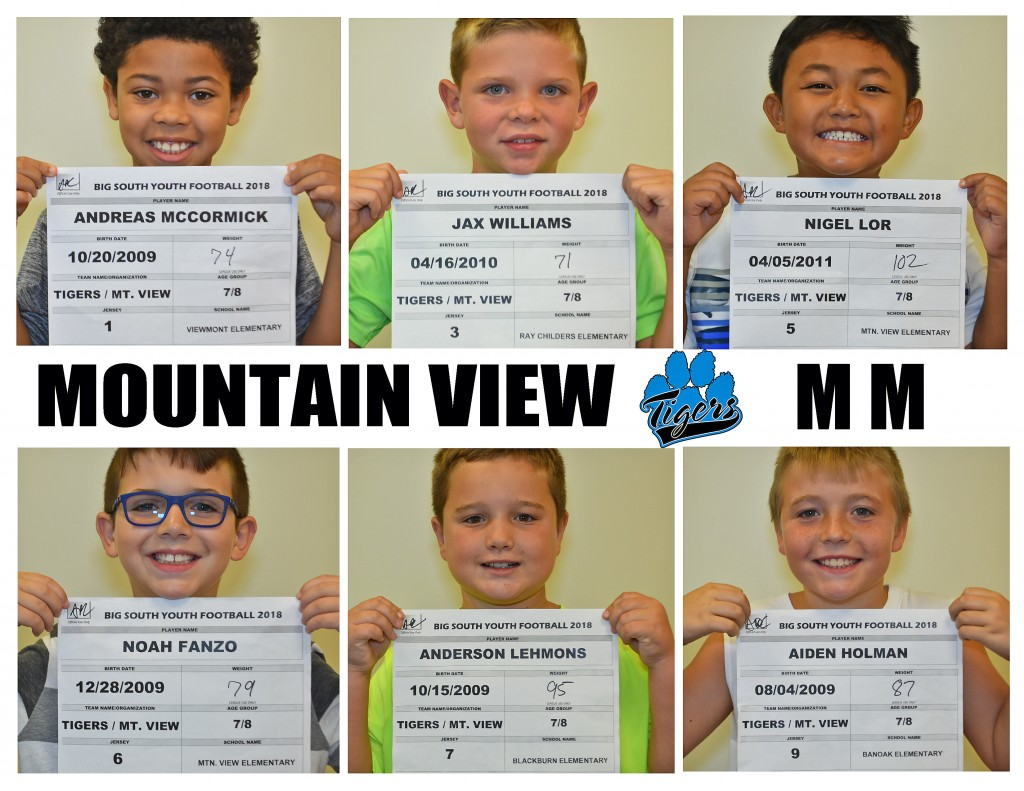 Mountain View Tigers MM Roster page 1