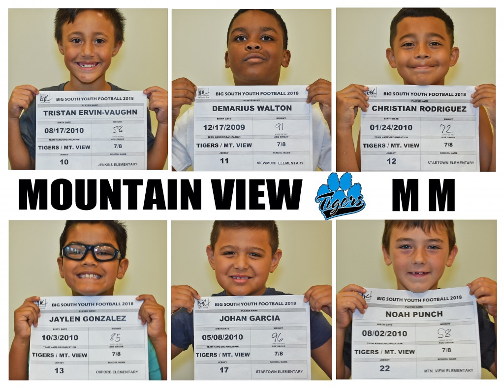 Mountain View Tigers MM Roster page 2