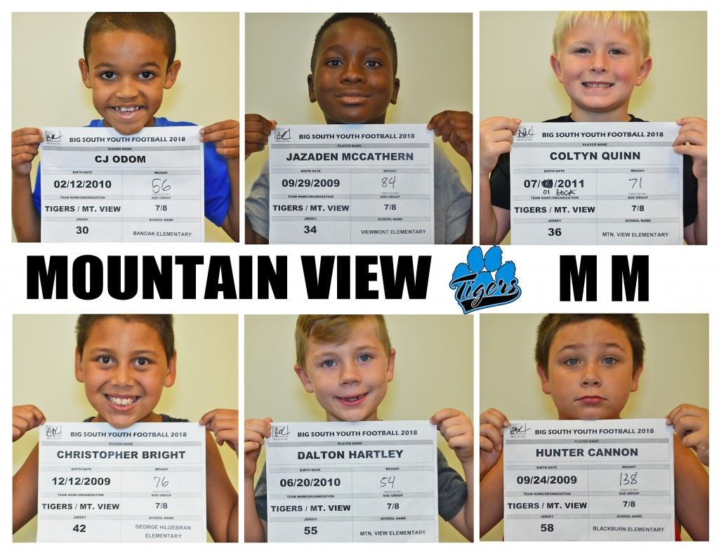 Mountain View Tigers MM Roster page 3