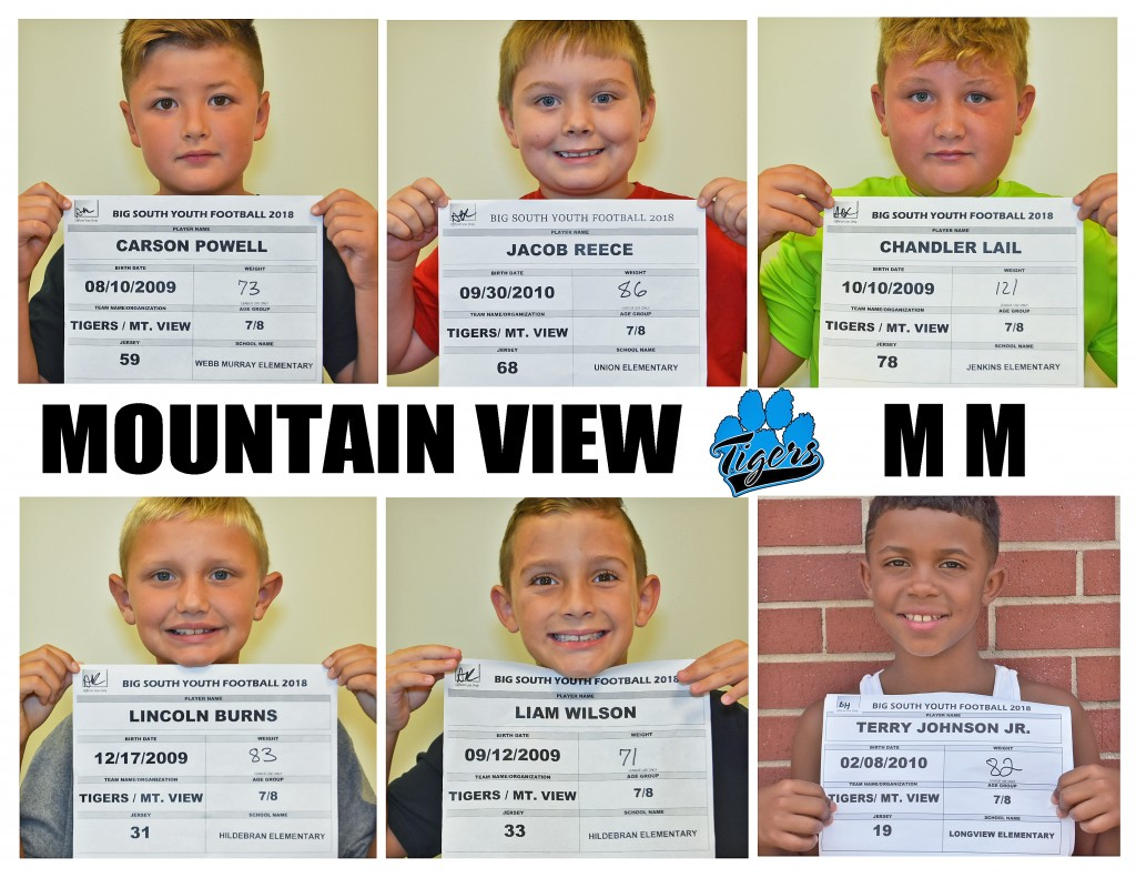 Mountain View Tigers MM Roster page 4