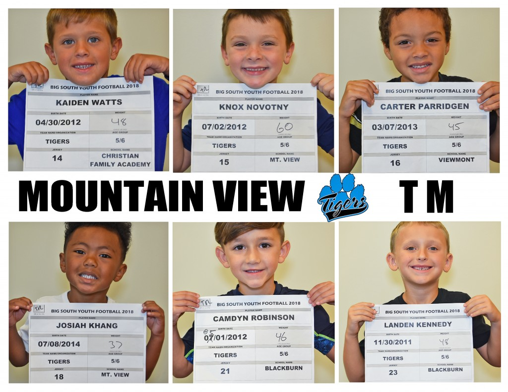 Mountain View Tigers TM Roster page 2