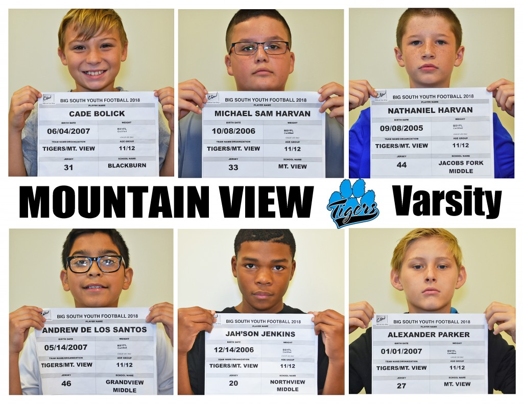 Mountain View Tigers Varsity Roster page 2