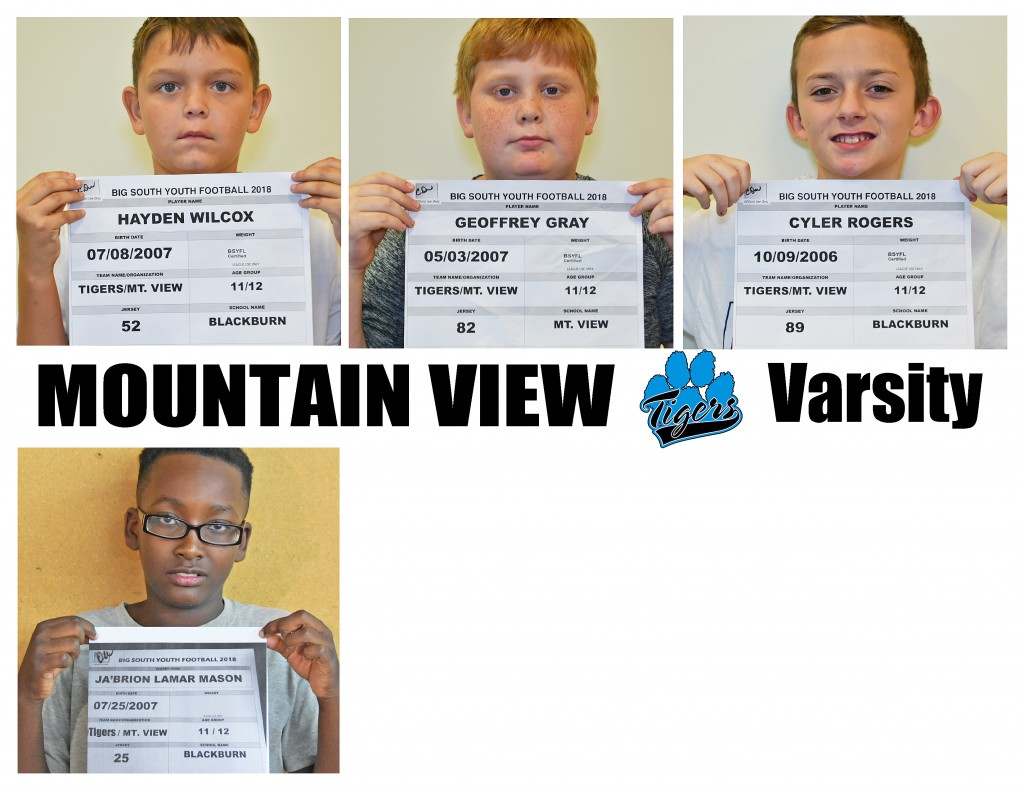 Mountain View Tigers Varsity Roster page 3